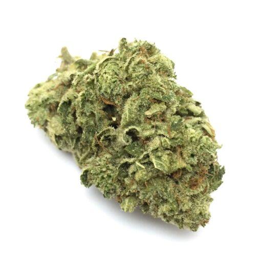 Gorilla Glue Strain - My Weed Center