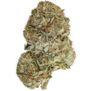 Grease Monkey Strain - My Weed Center