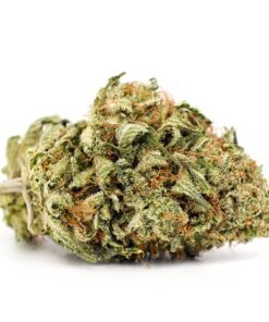 Violator Kush - My Weed Center
