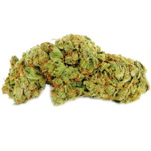 Jack Herer - My Weed Center
