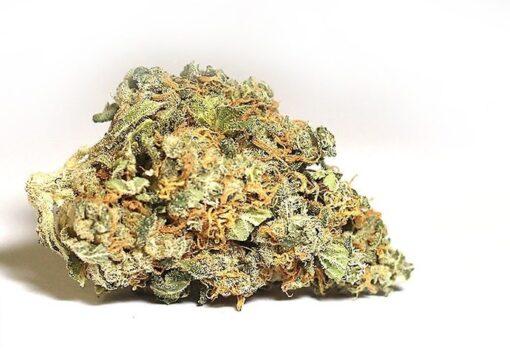 King Tut Strain - My Weed Center
