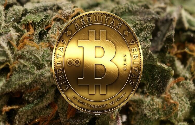 buy weed with bitcoins